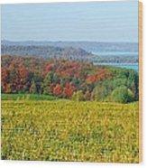 Michigan Winery Views Wood Print