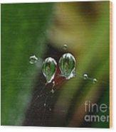 Micro Lenses Wood Print