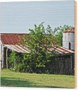 Middle Barn Wood Print by Lisa Moore
