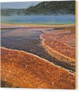 Middle Hot Springs Yellowstone Wood Print