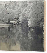 Middle River In Infrared Wood Print