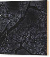 Midnight Tree 1 Wood Print