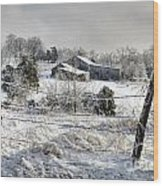 Midwestern Ice Storm - D004825 Wood Print