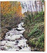 Mile Long Rapids Wood Print