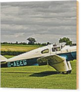 Miles M.3 Falcon Circa 1934 Wood Print