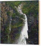 Milford Sound Waterfall Wood Print