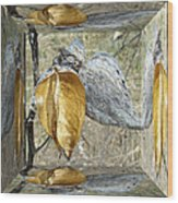 Milkweed Pods - Mirror Box Wood Print