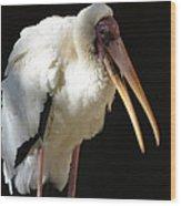 Milky Stork Wood Print