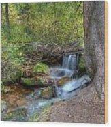 Millcreek Stream Wood Print