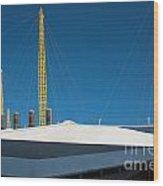 Millennium Dome Wood Print