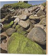 Minard Castle And Rocky Beach Minard Wood Print
