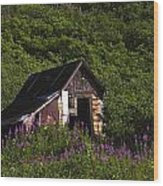 Miners Cabin Wood Print