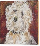 Mini Doodle Portrait Wood Print by Karen Ahuja