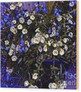 Mini Petunias Wood Print