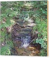 Mini Waterfall At Lower Tahquamenon Falls Park Wood Print
