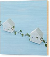 Miniature Houses And Wire Vine (ecology Image) Wood Print