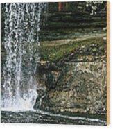 Minnehaha Falls Wood Print