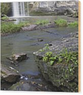 Minneopa Falls 36 Wood Print