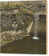 Minneopa Falls 39 Wood Print