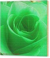 Mint Rose Wood Print