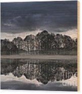 Mirrored Trees Wood Print