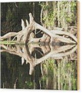 Mirrorknot Wood Print by Warren Clark