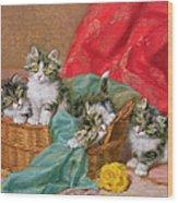 Mischievous Kittens Wood Print