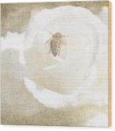 Miss Bee Haven II Wood Print