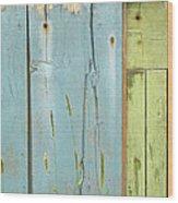 Missing Link  Wood Print