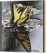 Missing You - Butterfly Wood Print