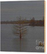 Mississippi Evening Wood Print