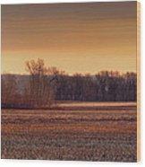 Missouri Bottoms Sweet Light Wood Print