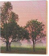 Mist Morning Sunrise Wood Print