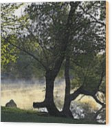 Mist On The Water Wood Print
