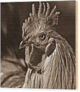 Mister Rooster From The Barnyard Wood Print