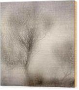 Misty Dreams Wood Print
