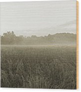 Misty Grounds Wood Print