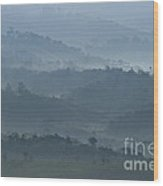 Misty Hills Of Chiriqui Wood Print by Heiko Koehrer-Wagner
