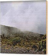 Misty Hills Wood Print