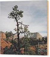 Misty Morning In Zion Canyon Wood Print
