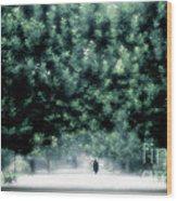 Misty Parisian Park 2 Wood Print
