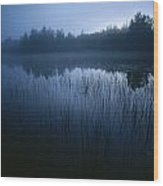 Misty View Of Taiga Forest Wood Print
