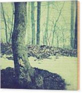Misty Winter Woods Wood Print
