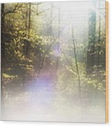 Misty Woods Wood Print