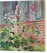 Mixed Hollyhock Wood Print by Peter Sit