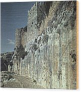 Moat Of Saladins Castle, A Byzantine Wood Print