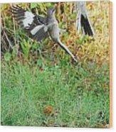 Mockingbird Fight Club Wood Print