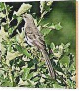 Mockingbird I Wood Print