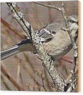 Mockingbird II Wood Print