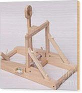 Model Catapult Wood Print